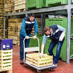 The Evolution of the Cold Storage Market